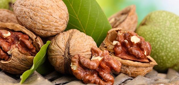 Чем полезны грецкие орехи. Меры предосторожности