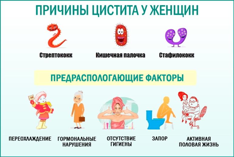 Цистит Лечение В Домашних Условиях Диета. 10 самых эффективных препаратов для лечения цистита у женщин
