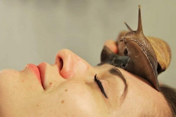 Необычные спа-процедуры_массаж улитками