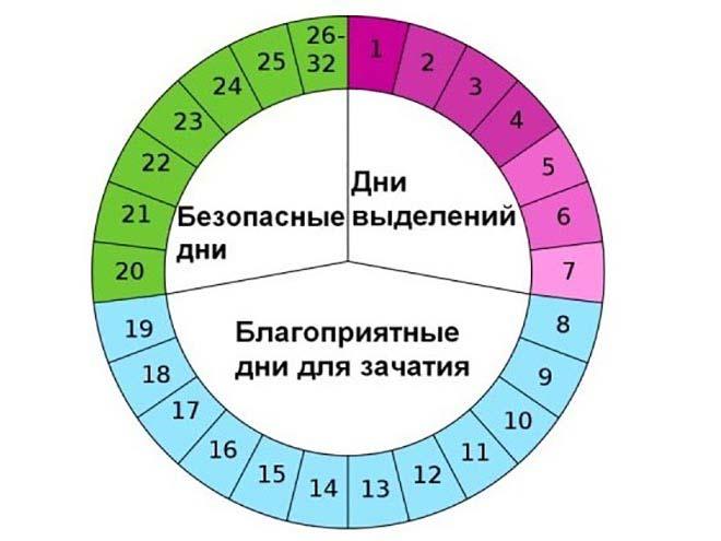 follikulyarnaya faza 5 - Признаки и ощущения овуляции у женщины
