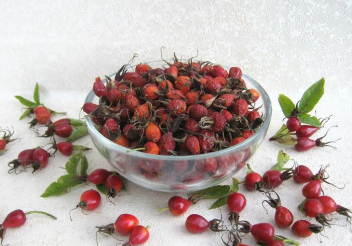 Осень – лучшее лекарство: укрепляем иммунитет и продлеваем молодость с помощью осенних ягод
